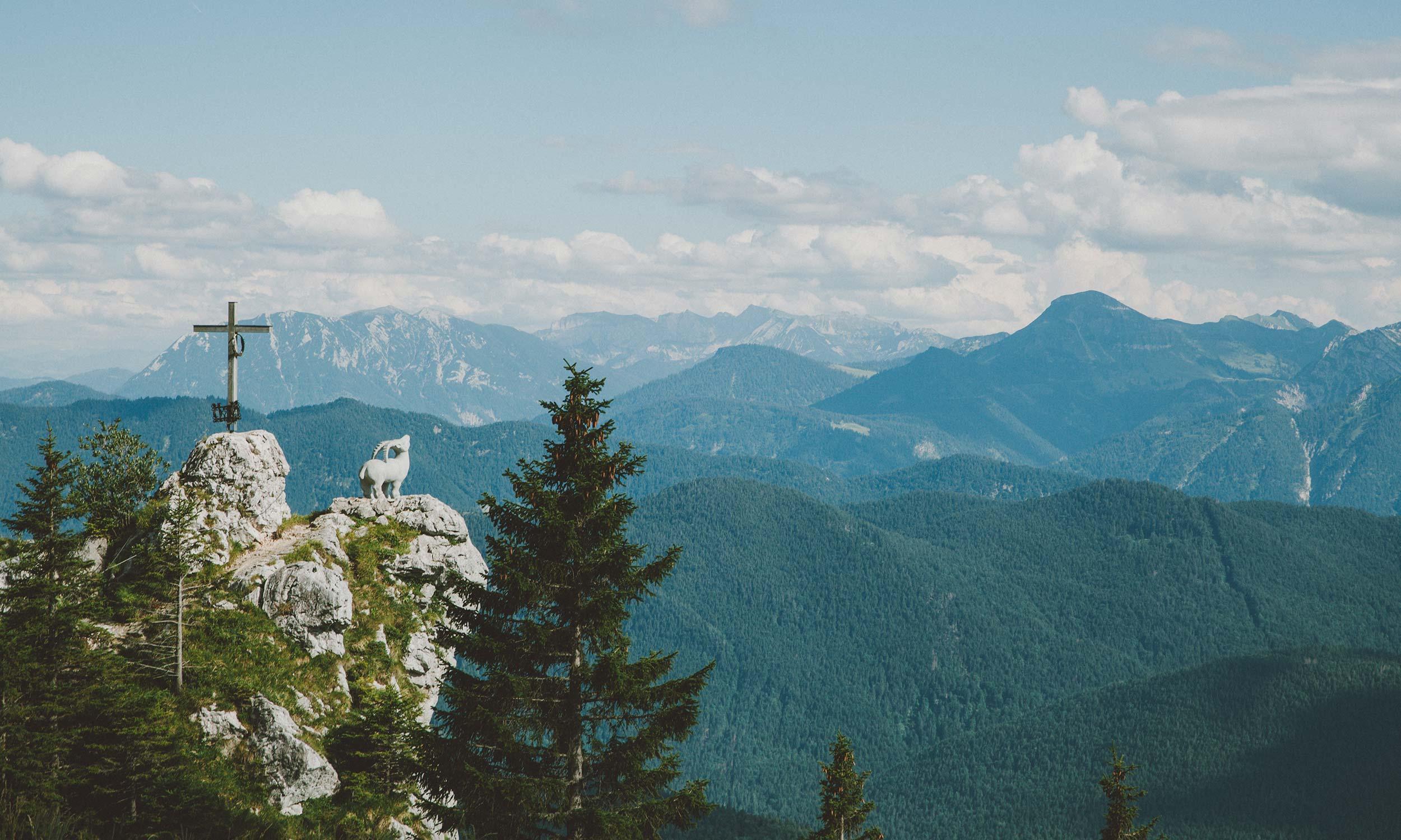 Steinbock und Gipfelkreuz mit Bergpanorama