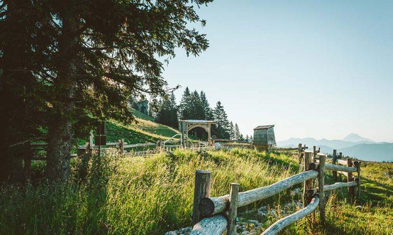 Barfußpfad und Kneipbecken mit Wiese und Zaun